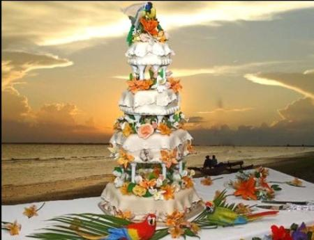 CakeChannel com   World of Cakes  Picture of Hawaiian Wedding Cake Picture of Hawaiian Wedding Cake